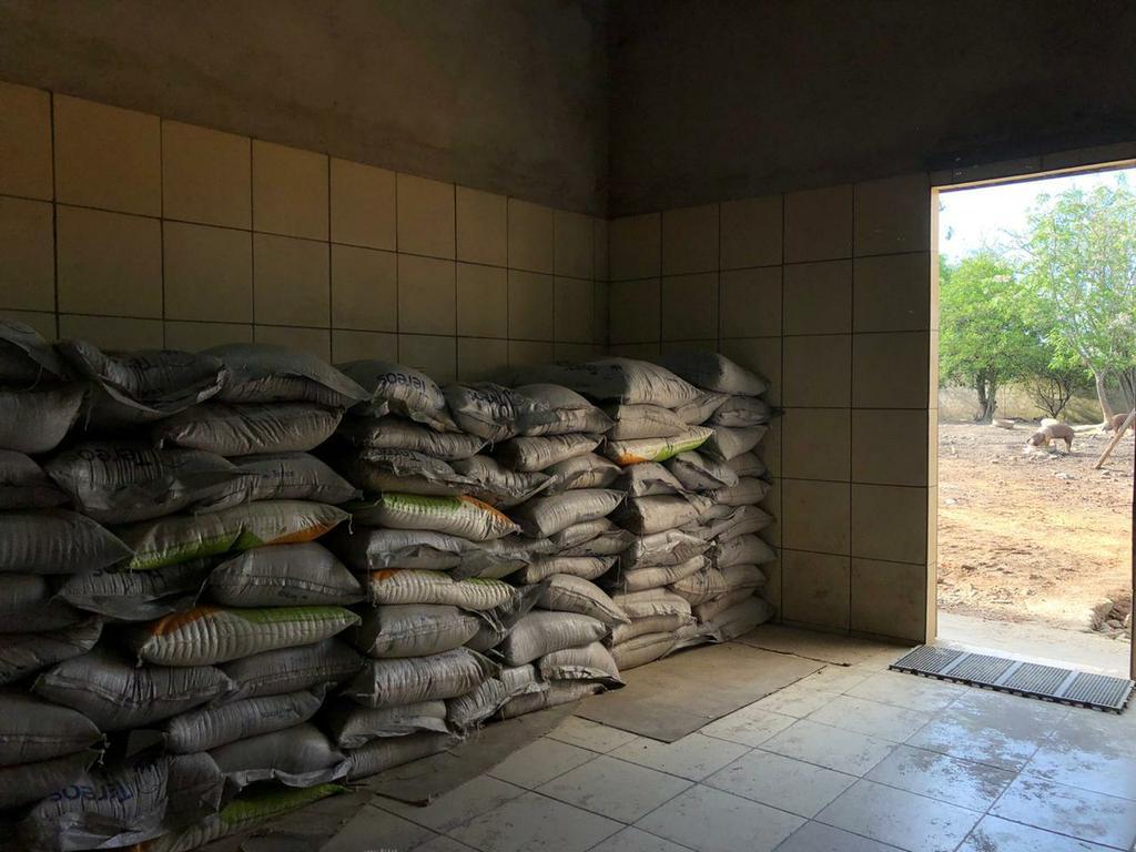 Depósito onde o arroz era estocado fica em meio a galinhas e porcos